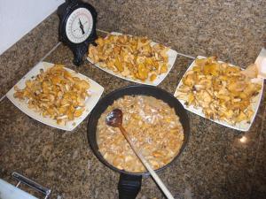 natur-pilze-kochen2